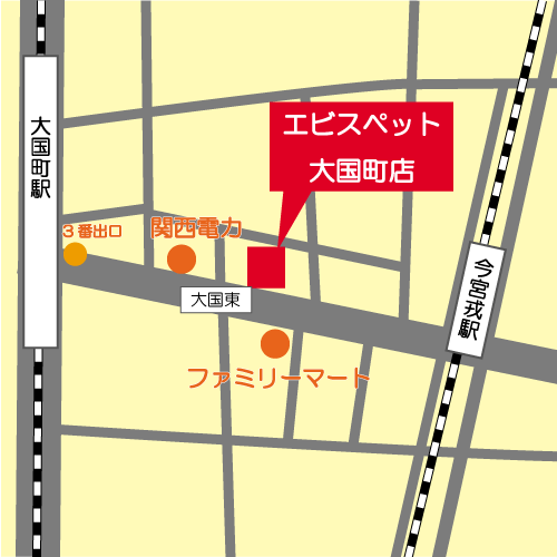 大国町地図